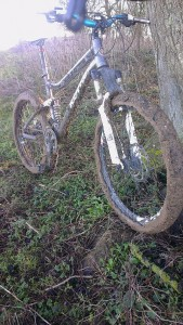 Glue-like mud slows down the Flying Dane